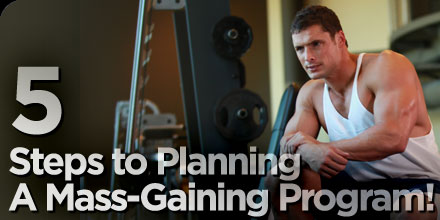 steps to planning a mass gaining program