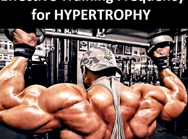 effective training frequency for hypertrophy