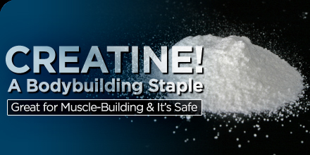 creatine a bodybuilding staple