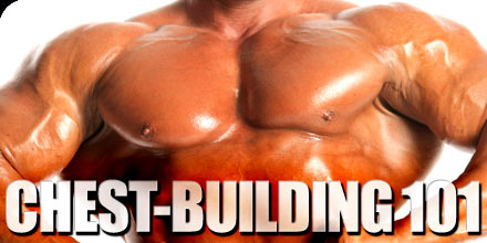 Chest Building