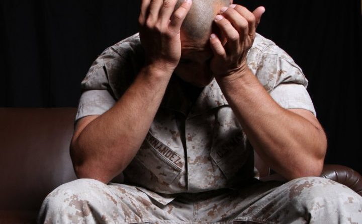 PTSD supplement