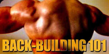 Back Building