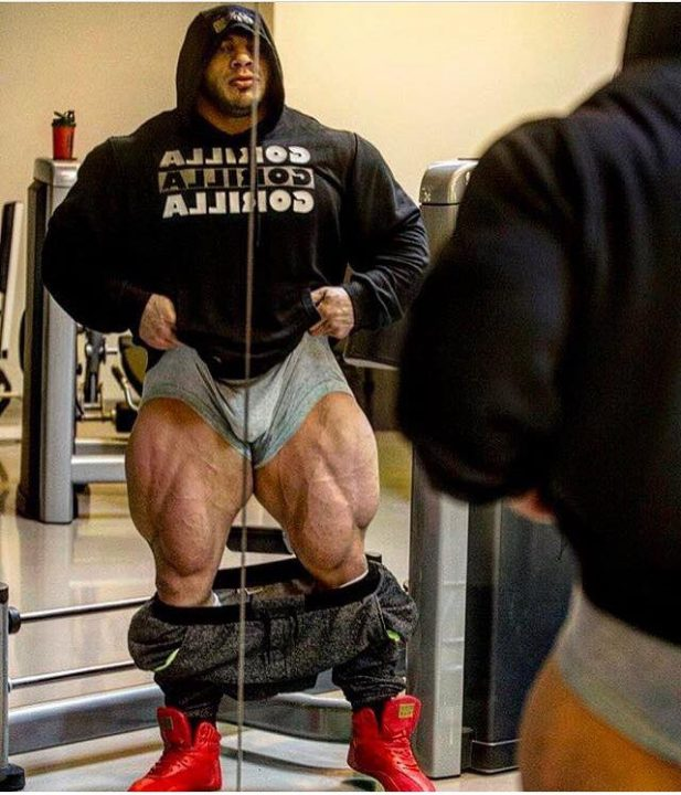 What To Expect On Your Visit Day: What Should We Expect To See From Big Ramy This Year?