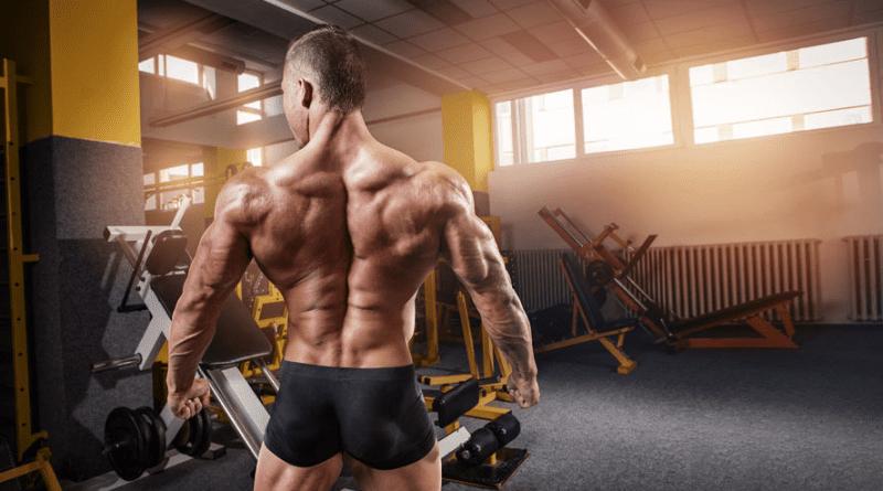 supplement accessories for bodybuilders
